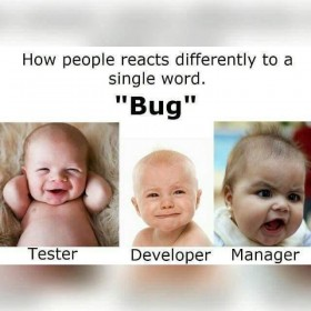 "Reactions for the Word ""Bug"""